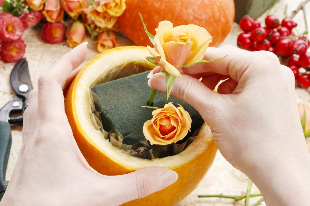 Arranging roses into a prepared pumpkin to be used as a Thanksgiving centerpiece